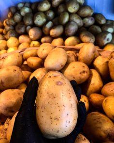 Fresh potatoes @ramslog.cph @reffen_copenhagenstreetfood Hand Cut Fries, Fresh Potato, Wild Garlic, Homemade Dressing, Homemade Food, Soul Food, Copenhagen, Salads, Wraps