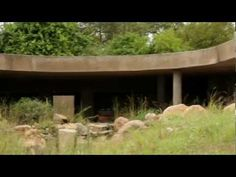 Sabi Sabi: Earth Lodge Game Reserve South Africa, Game Lodge, Private Games, Africa Travel, Best Games, Lodges, Safari, Destination Wedding, Cabin