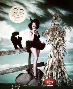 Vintage et cancrelats: Les sorcières