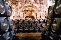 Los vinos de Osborne, galardonados en los International Wine and Spirit Competition 2013 http://www.vinetur.com/2013080113029/los-vinos-de-osborne-galardonados-en-los-international-wine-and-spirit-competition-2013.html