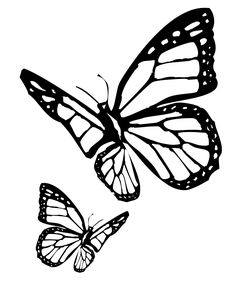 butterfly drawing coloring outline monarch tattoo stencil template designs pages gardens meaning