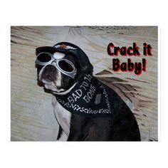 Boston Terrier:  Crack it, Baby! Postcard   funny biker quotes, biker chick sturgis, biker tattoos #bikers #bikerbrotherhood #bikerofinstagram, 4th of july party Harley Davidson, Biker Tattoos, Biker Shirts, Biker Quotes, Biker Chick, 4th Of July Party, Bikers, Boston Terrier, Funny