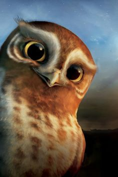 """Wallpaper picture of Gylfi the Owl. From the CG animated feature movie """"Legend of the Guardians: The Owls of Ga'Hoole"""". This wallpaper Les Gardiens De Ga'hoole, Cartoon Movie List, Angel Of The Morning, Guardians Of Ga'hoole, Owl Wallpaper, Illustration, Owl Bird, Cute Owl, Axolotl"""
