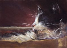 Sandy Byers Pastel CAT Tuxedo Maine Coon Animal Painting