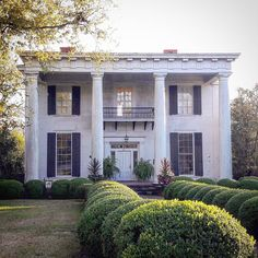"This greek revival house has the ""famous"" pillars that throughout the ages, Greek-style buildings have used. Greek Revival Architecture, Neoclassical Architecture, Architecture Old, Neoclassical Design, Southern Plantation Homes, Southern Plantations, Colonial Mansion, Colonial Exterior, New House Construction"