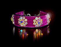 Rhinestone Collars, Swarovski Crystal Dog Collars - Posh Pawz