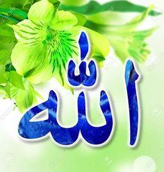 DesertRose,;,Allah Jalla jalaluhu,;, Islamic Images, Islamic Pictures, Islamic Art, Islamic Quotes, Almighty Allah, Allah Islam, Alhamdulillah, The Creator, Lion Pictures