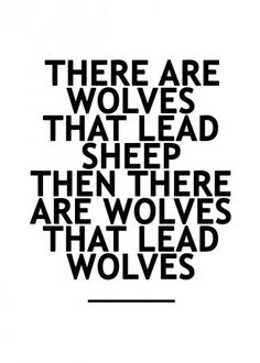 Wolves eat sheep And lead other wolves. Work Quotes, Great Quotes, Quotes To Live By, Me Quotes, Motivational Quotes, Inspirational Quotes, Qoutes, Passion Quotes, John Maxwell