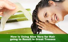 How is Using Aloe Vera for Hair going to Result in Healthy Tresses (with images) · sarvliving Aloe Vera Shampoo, Natural Aloe Vera, Anti Dandruff Shampoo, Aloe Vera For Hair, Smooth Hair, Fall Hair, Hair Growth, Being Used, Healthy Hair