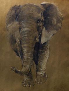 elephant,crayon