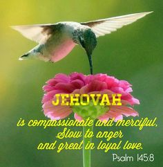 Jehovah is perfect in every way