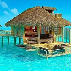Paradise Island, Mal