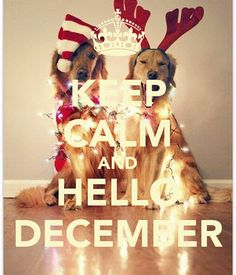 Keep Calm And Hello December