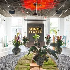 SONOS Studio LA's Sonic Garden installation by sound and environmental installation artist, Mileece. Plants act as instruments to create harmonic symphonies using bio-electrical signals wired to its leaves which respond to human touch.