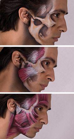 Miguel Jaw Anatomy by Battledress