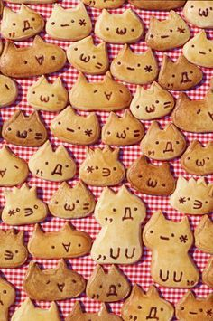 Cute cat cookies with anime faces.