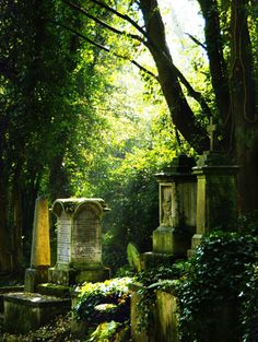 Over-grown, lit cemetery. #passare #endoflifemgmt#death #livewell#planwell#leavewell #goodgrief#ease#trust#funeral #headstone #tombstone  #cemetery #LeaveWell #Death #RIP #graveyard #passage #passages