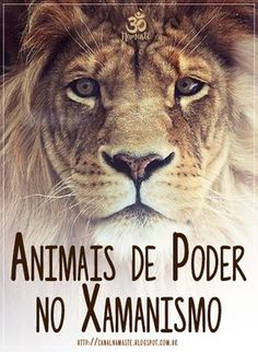 In shamanism we go through the discovery of the guardian animal that is present in . Wicca, Tarot, Power Animal, Animal Totems, Believe In Magic, Ancient Art, The Guardian, Lions, Discovery