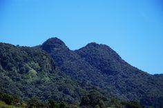 Bosque Tres Picachos, Adjuntas, PR