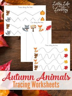 These autumn animals tracing worksheets are a fun fine motor activity for toddlers and preschoolers.