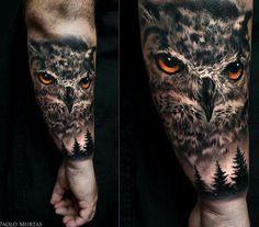 Owl - Paolo Murtis