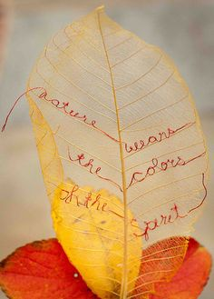 """Nature wears the colors of the spirit..."" delicate sewn leaf.... Susan Elliott"