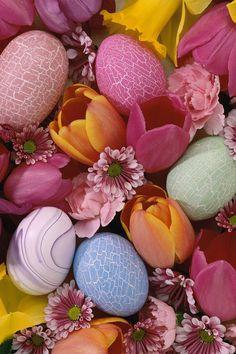 Easter Eggs iPhone 4 Retina Display Wallpaper