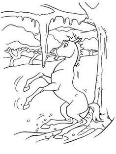 Horse Coloring Pages Adult Sheets Books Crafts Drawings Illustration Cavalli Spirit
