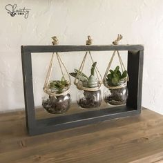 50 Cheap DIY Holiday Gifts That Only Look Expensive - Cheap DIY Gifts and Inexp. 50 Cheap DIY Holiday Gifts That Only Look Expensive - Cheap DIY Gifts and Inexpensive Homemade Christmas Gift Ideas for . Suculentas Diy, Diy Simple, Easy Diy, Succulent Frame, Succulent Gifts, Diy Gifts Cheap, Crafts Cheap, Easy Gifts, Quick Diy Gifts For Friends