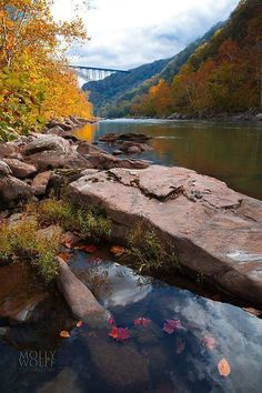 New River Gorge, West Virginia © Molly Wolff Photography