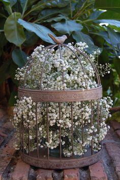 jaula flores- casilda se casa