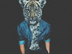 imagenes hipster tumblr animales - Buscar con Google
