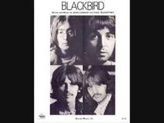The Beatles – Blackbird  For Drug Recovery Assistance Call 1-855-602-5102 24/7/365   http://yourdrugabusehotline.com/the-beatles-blackbird/