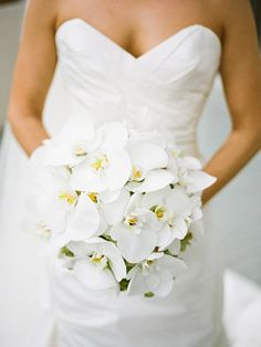 White orchid bouquet from Joey + Jessica