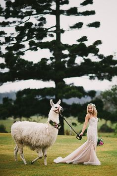 LOVESTRUCK WEDDINGS //  Penny + Chris // Yandina Station. As seen on Hello May. Photo by Jess Jackson Photographer.