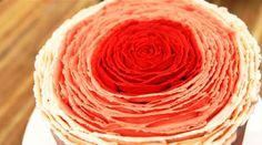 Pompøs bærlagkage med et smukt ydre af en rose. Indeni er der tre lære kagebunde med hindbær- og brombærmousse. Udenpå er smørcreme i skønne rosa nuancer.