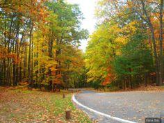 Autumn in Michigan <3