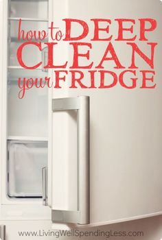 Clean Fridge Vertical