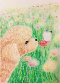 パステル画 お花畑のプードル pastel drawing, a poodle in a flower garden Soft Pastel Art, Pastel Drawing, Dog Illustration, Illustrations, Dog Art, Vintage Christmas, Cute Dogs, Scenery, My Arts