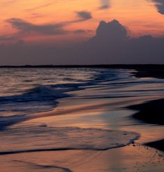 outer banks north carolina. So wonderful in the spring !  http://www.elanvacations.com/