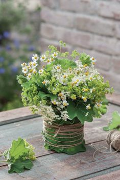 Table decoration made of chamomile, elderberry and lady's mantle - Trend Innen Pflanzen 2020 Mantle, Wild Flowers, Flower Arrangements, Mason Jars, Herbs, Leaves, Table Decorations, Plants, Wedding