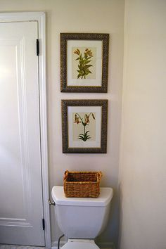 Botanical Art Work in Bathroom