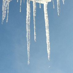 bunch OF icicles