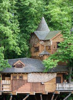 Tree House por linda