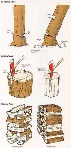 How to fell a tree and split the logs.