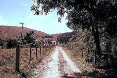 Faz São Roque  Estrada de acesso 1974