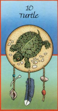 Turtle...Great Mother, Feed my spirit, Clothe my heart, That I may serve you too. (MOTHER EARTH)