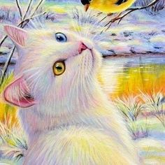 Drawing On Creativity ACEO original white cat goldfinch bird winter sunlight landscape painting art Animals And Pets, Cute Animals, Gif Animé, White Cats, Cat Drawing, Beautiful Cats, I Love Cats, Animal Drawings, Cat Art