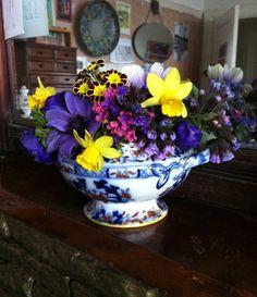 March posie. Anemones, Pulmonaria, Narcissus, Auricula