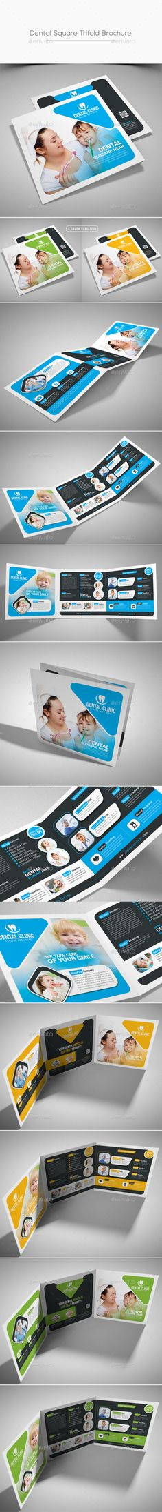 Square Trifold Brochure  Brochure Template Ai Illustrator And